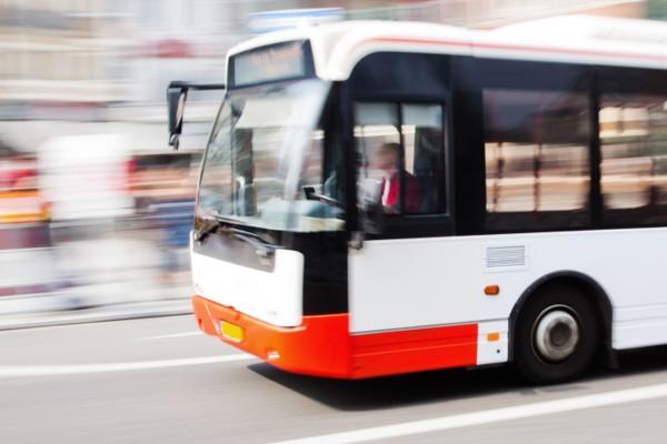 big-bus